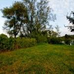 Garten und Dorfteich